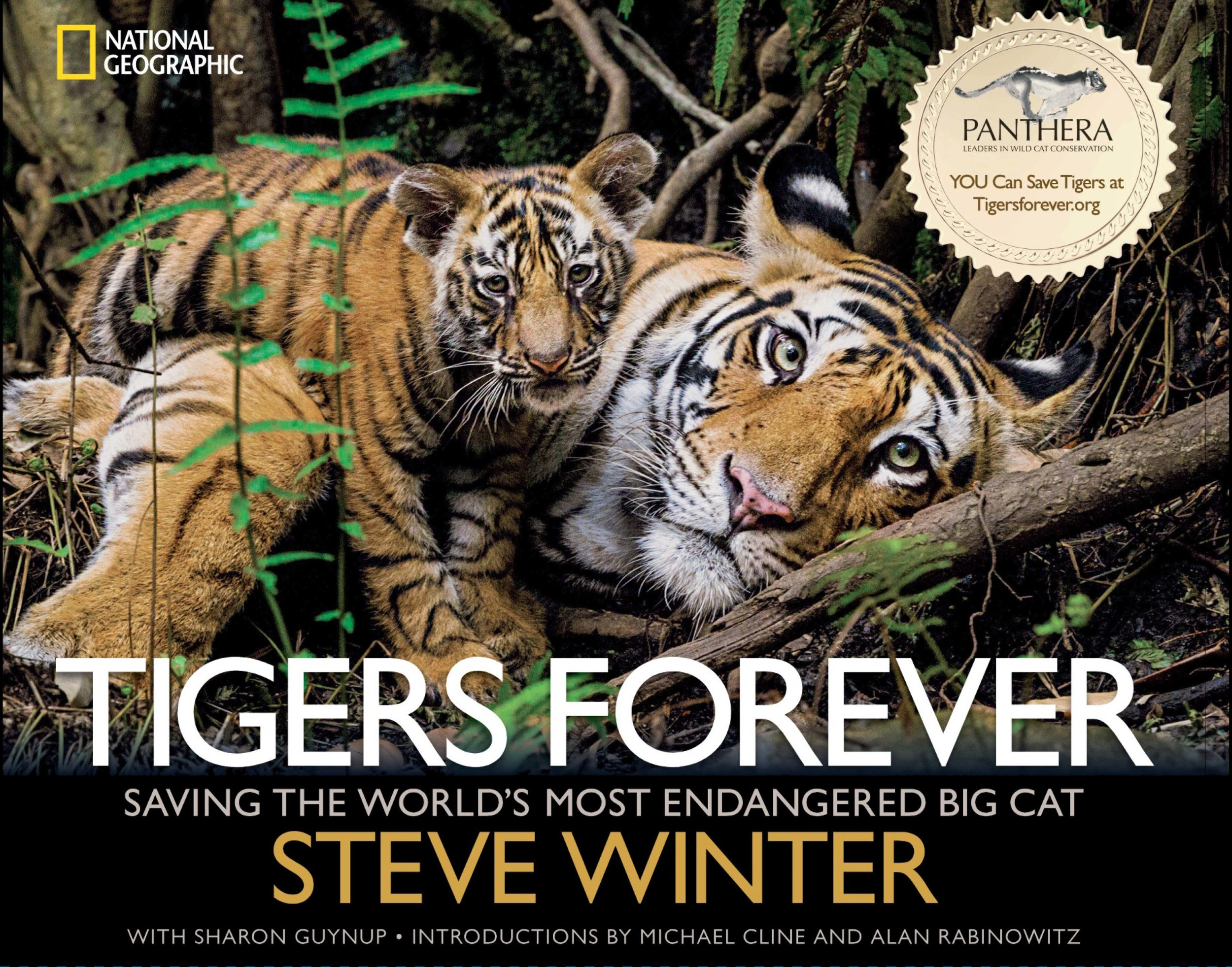 S.Winter Tigers-Forever book cover.jpg