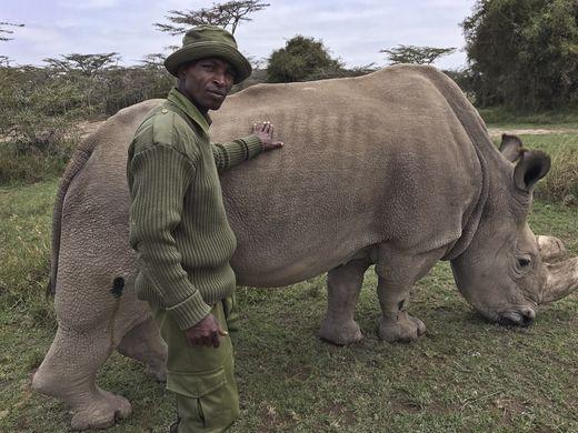 ©Joe Mwihia/AP-Kenya