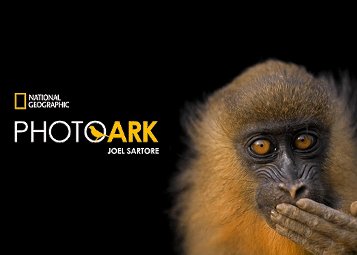 ©Joel Sartore-National Geographic/Photo Ark