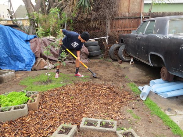 chet-garden-dig.jpg