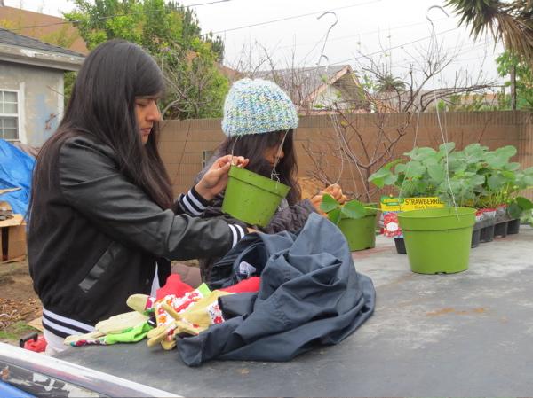 chet-strawberry-baskets.jpg
