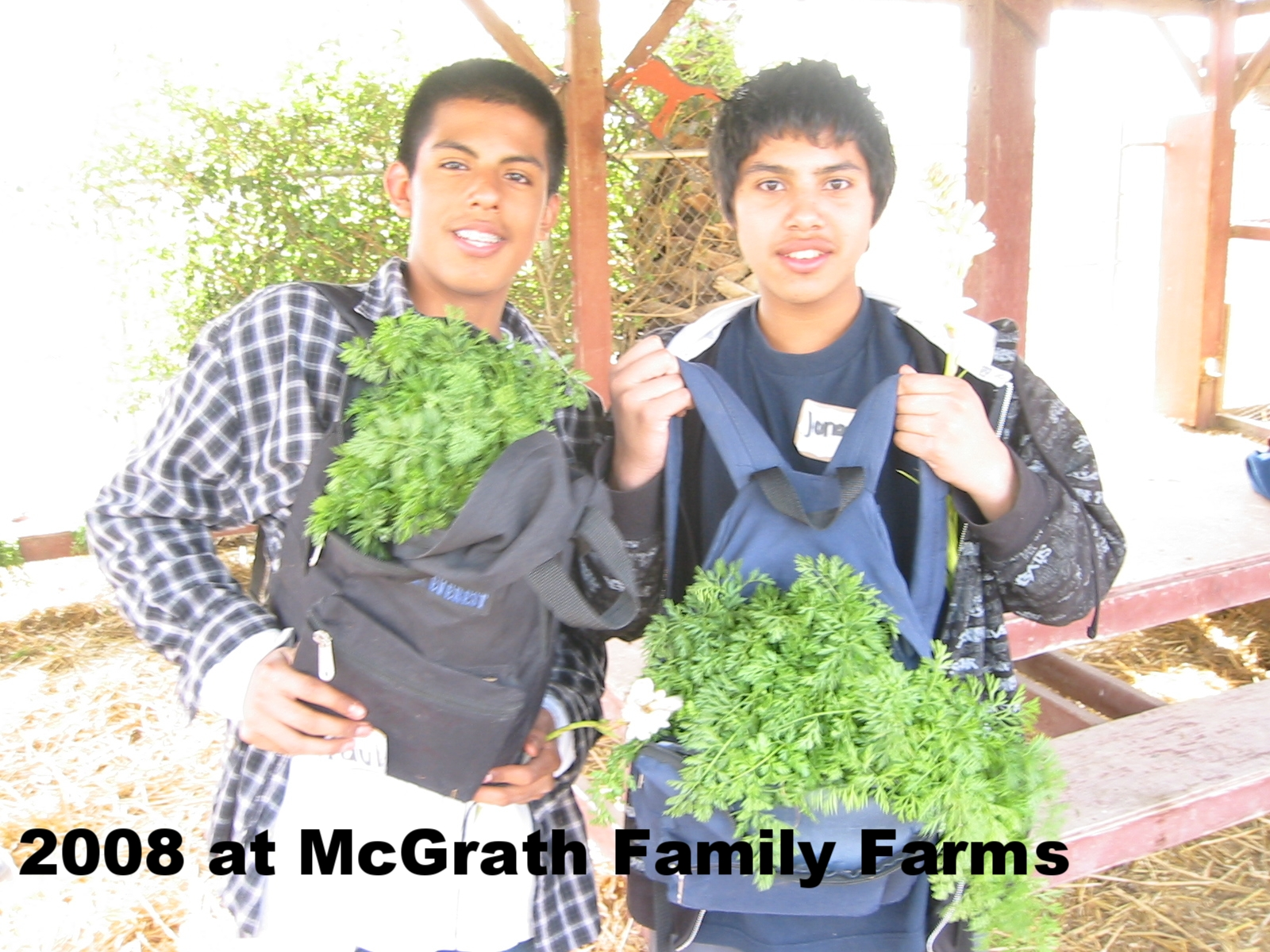 RD McGrath Boys Greens.JPG
