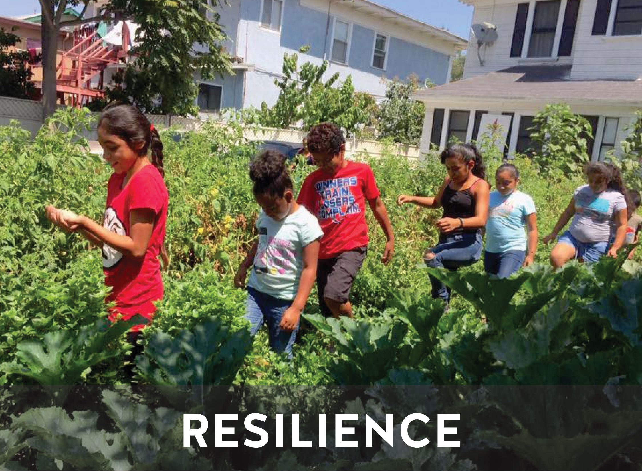 RESILIENCE   Resilient communities are built by connected and engaged people. Our youth-developed programs help youth find their interests while giving them the tools and skills to make the changes they want to see in their communities.
