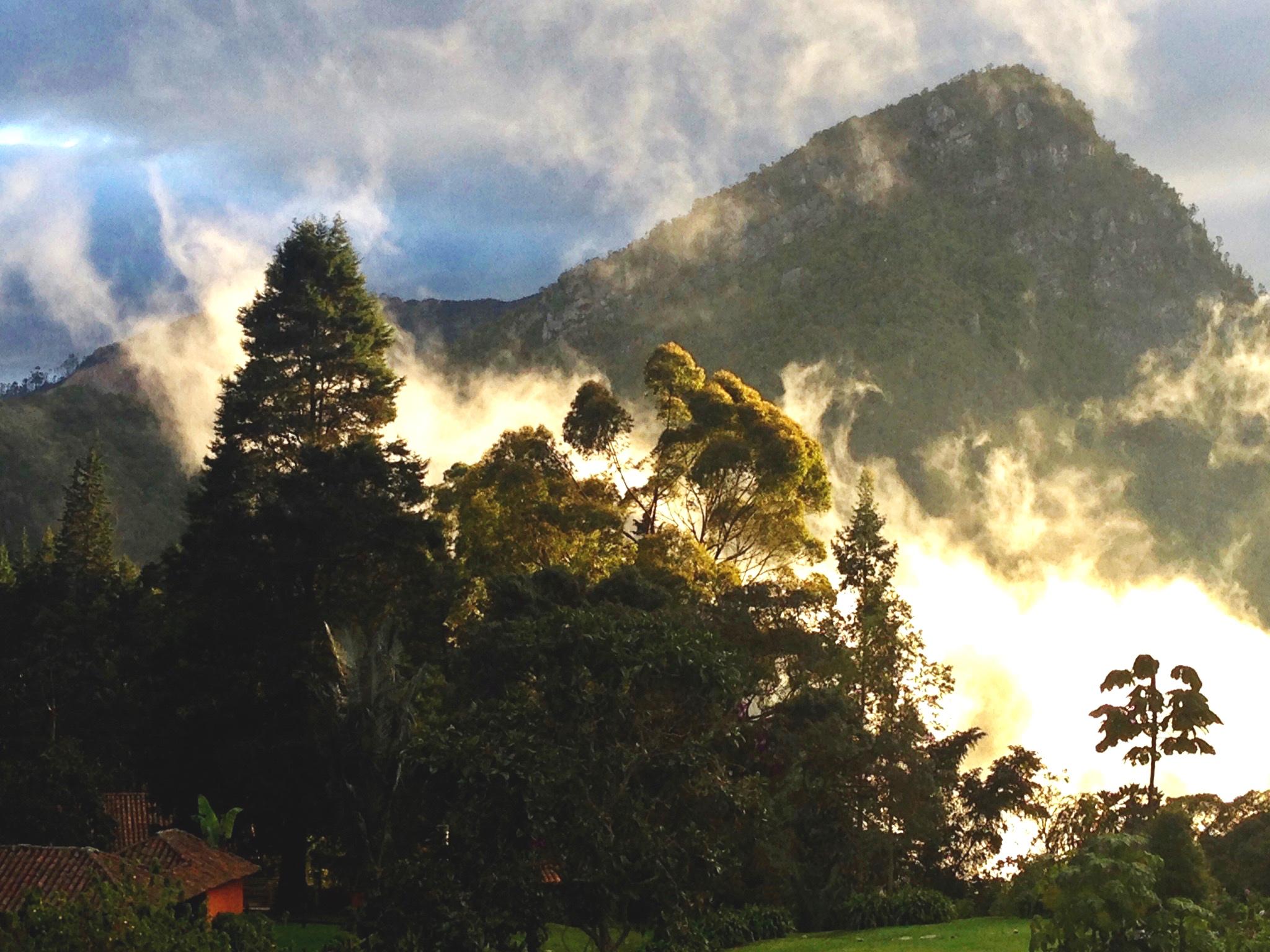 Reserva Natural El Chulajuán.