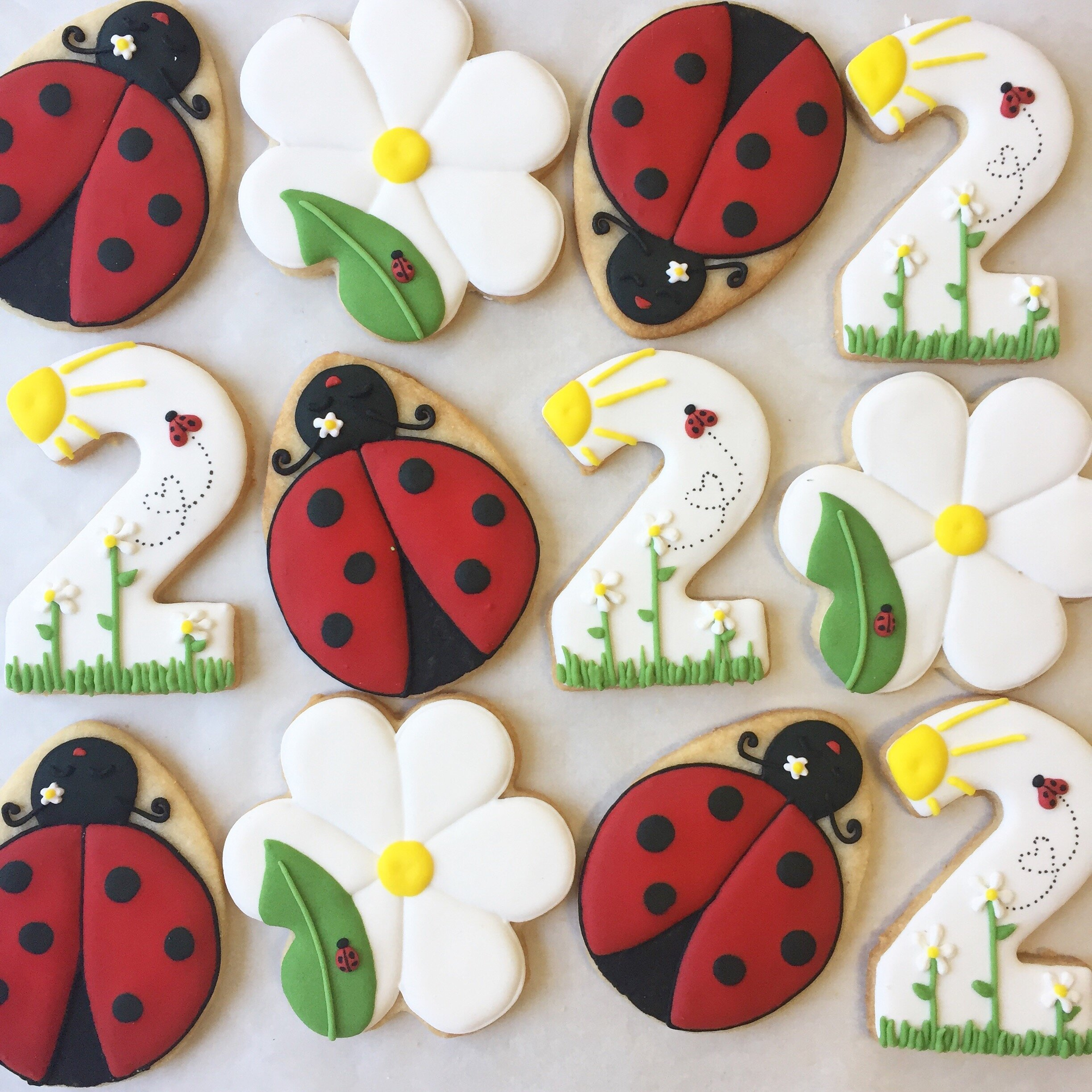 ladybug_B1BEB2AB-1FFD-4CCB-841E-8BB64EC799BB.jpg