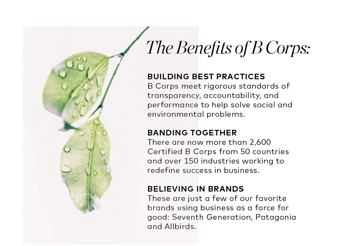 benefits of b corps.jpg