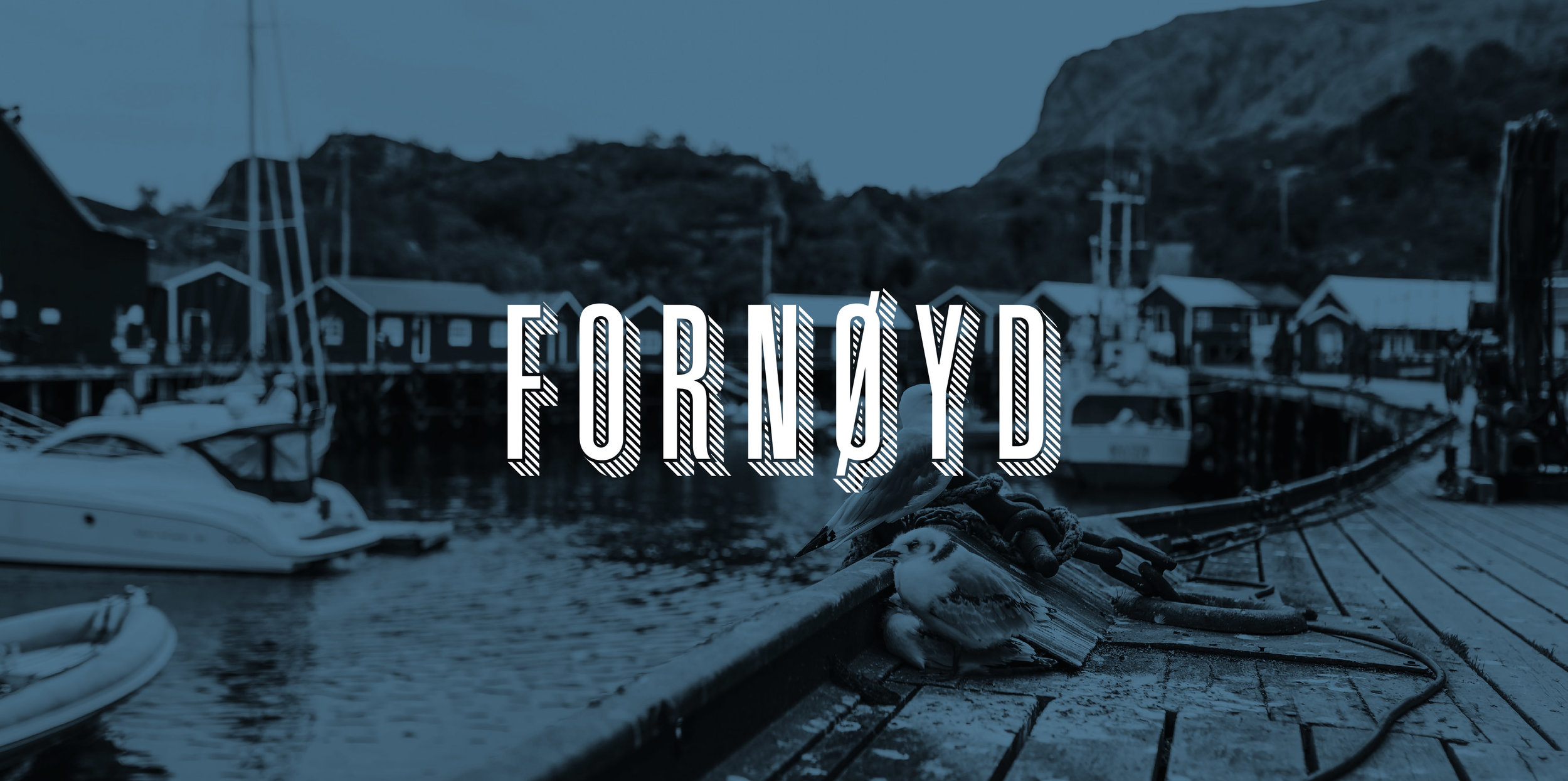 logo_photo_fornoyd-01.jpg