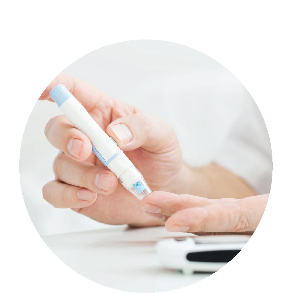 maintains blood sugar level -