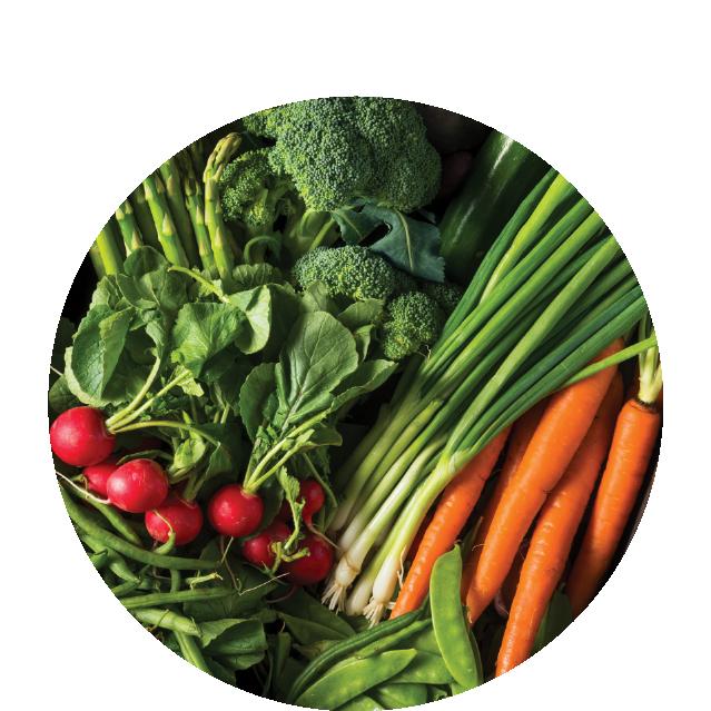 prevents malnutrition -