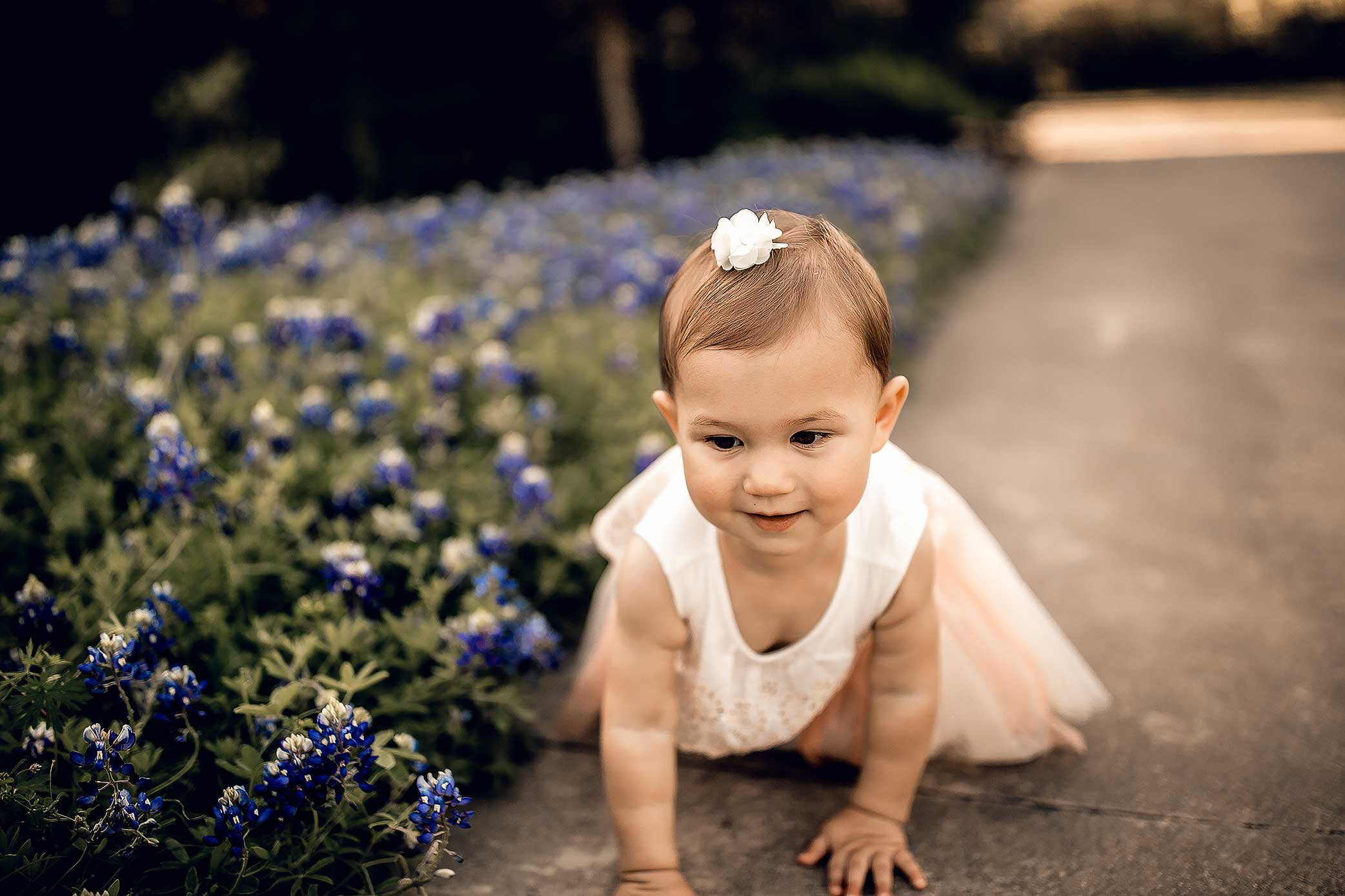 shelby-schiller-photography-toddler-pink-dress-and-bluebonnets.jpg