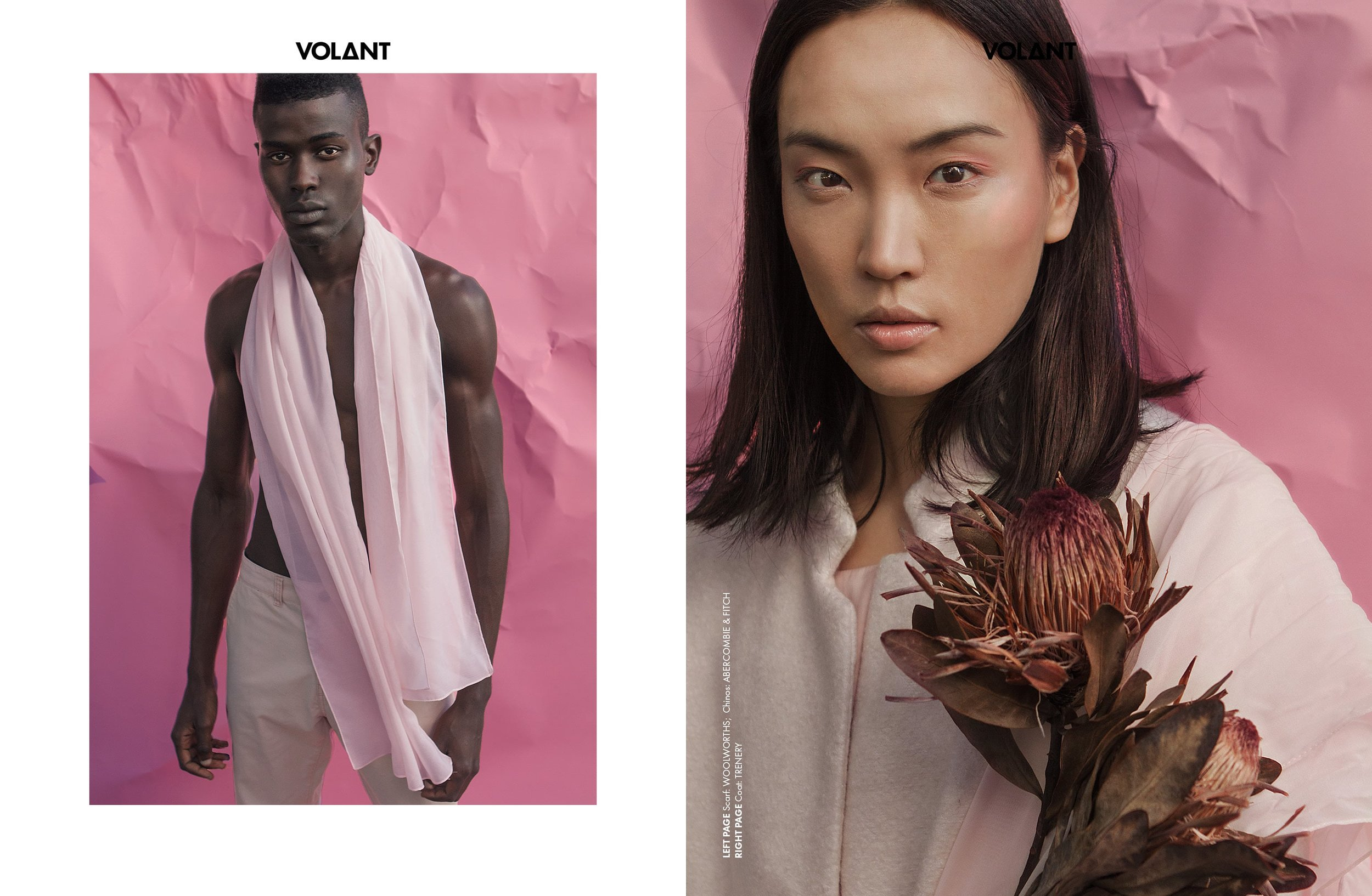 VOLANT-webitorial-pinkfuse3.jpg