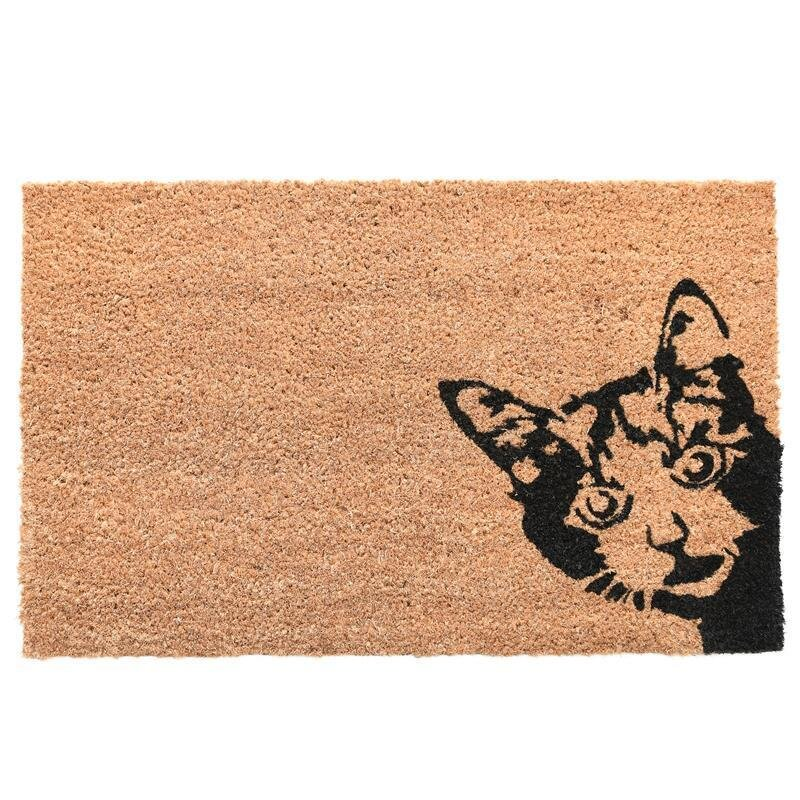 Cat door Mat.jpg