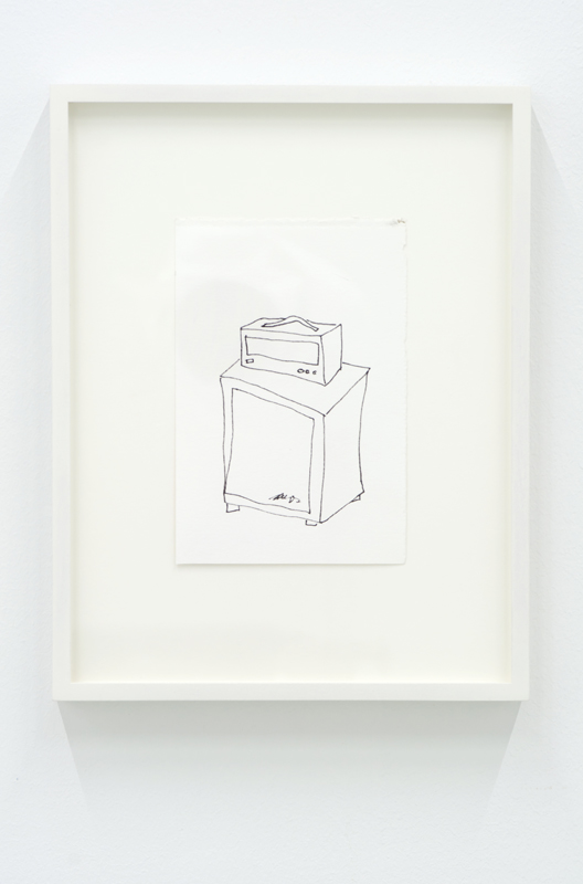 Untitled (from the series Amps)