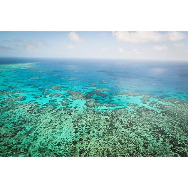 Watching #earthfromspace @bbcone is yet another alarming wake up call to how much us humans are ruining the planet. I can't believe that since 2016 when I took this photo on the #greatbarrierreef, 1,500km of coral reef has been bleached, and therefore destroyed 😭 I think it's time to get serious 🌏 #savetheplanet #globalwarming