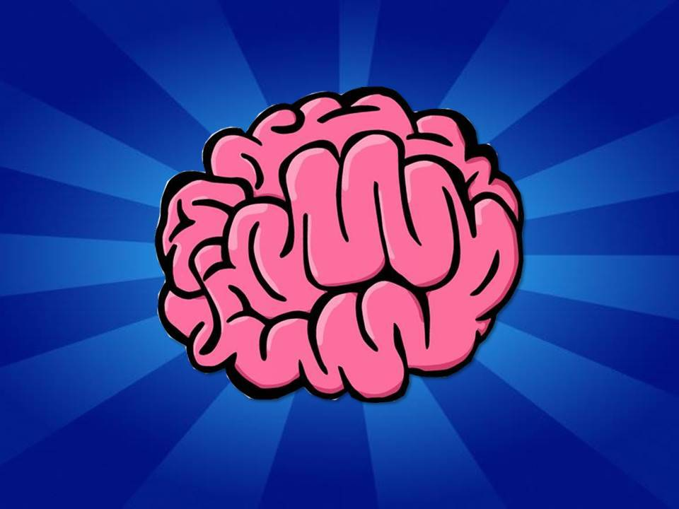 Learning and Your Brain