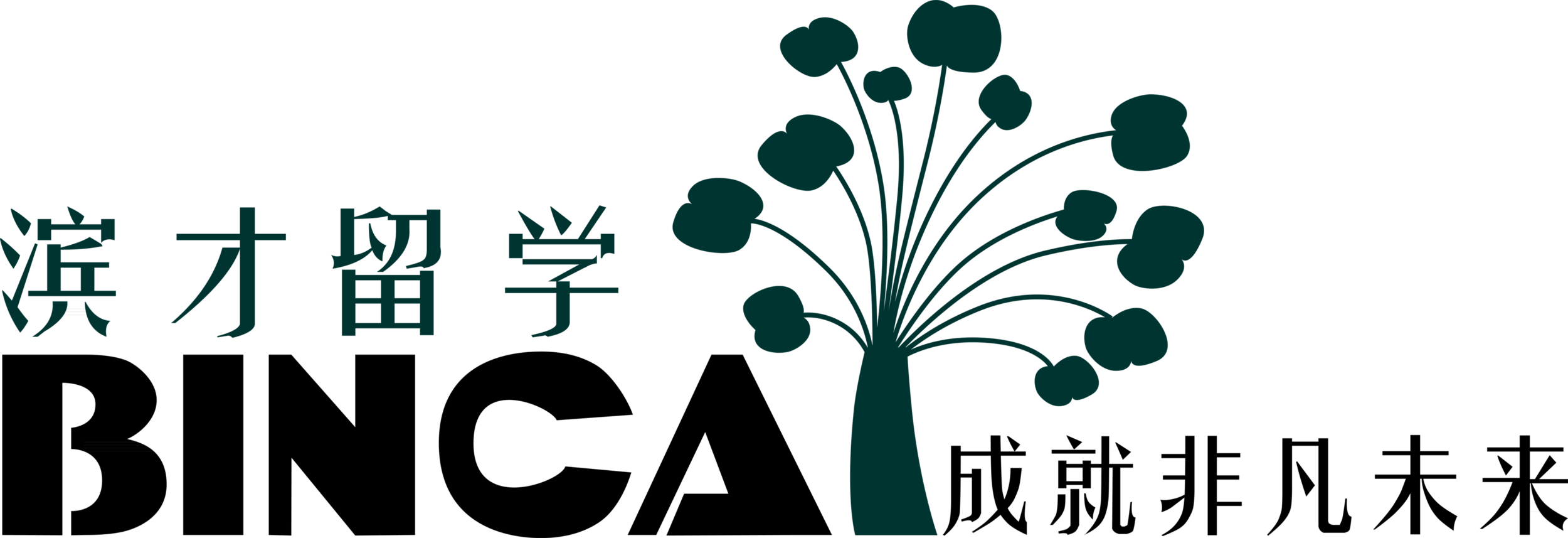 Logo Agents Harbin BinCai (Study Abroad) Information Advisory Co., Ltd..png