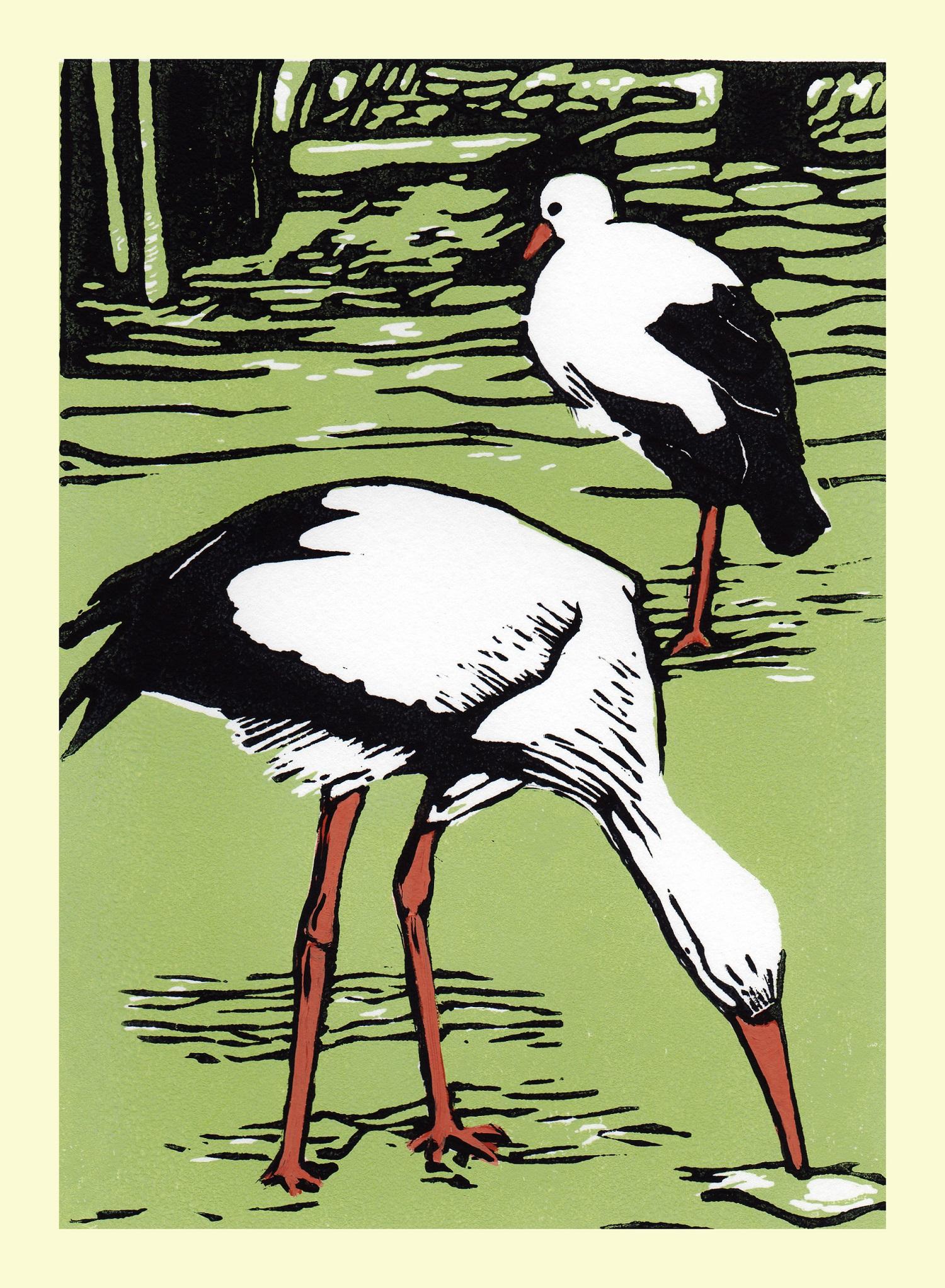 Pensthorpe - White Stork   linocut