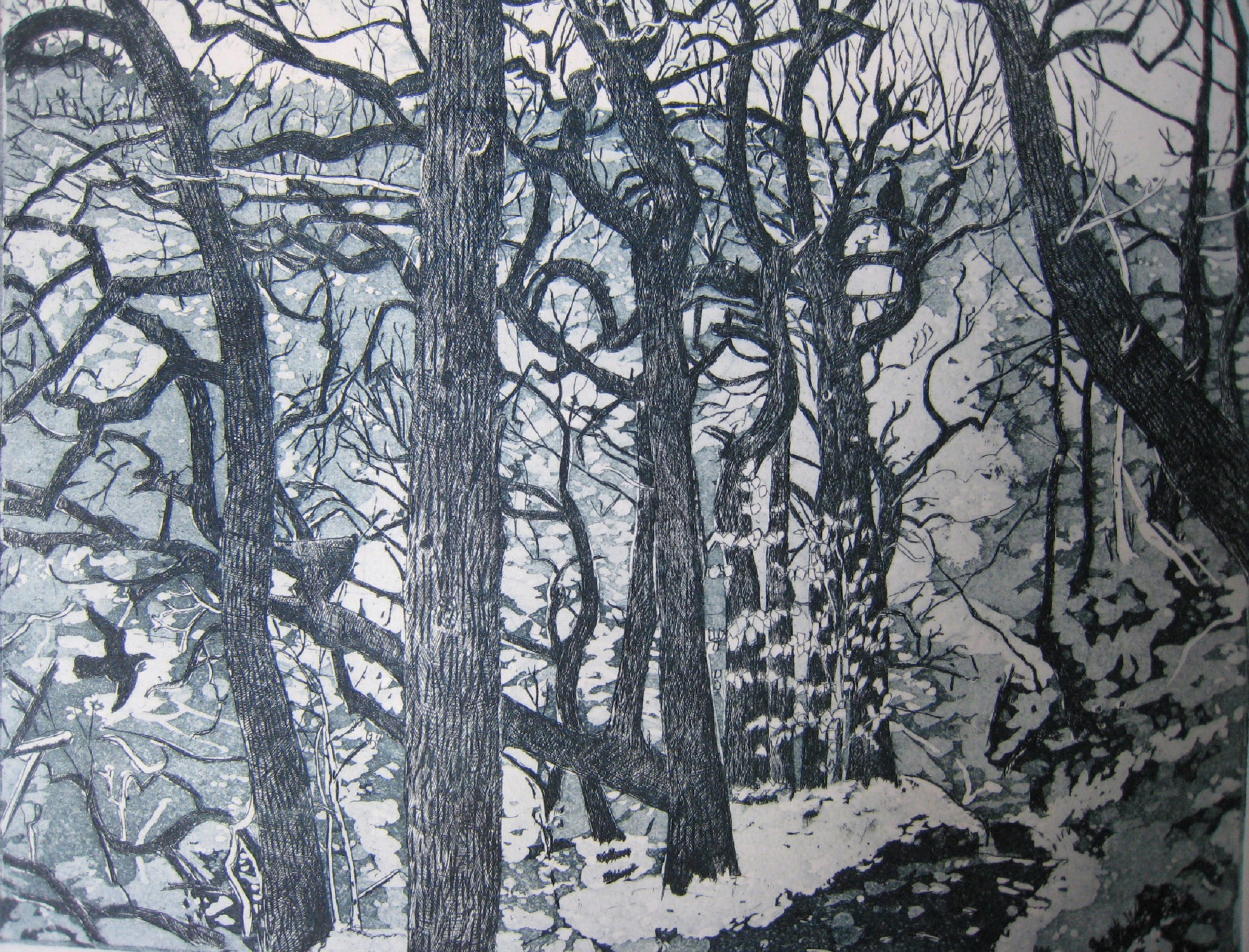 Through the Woods   etching   20 x 24 cm   (unframed)