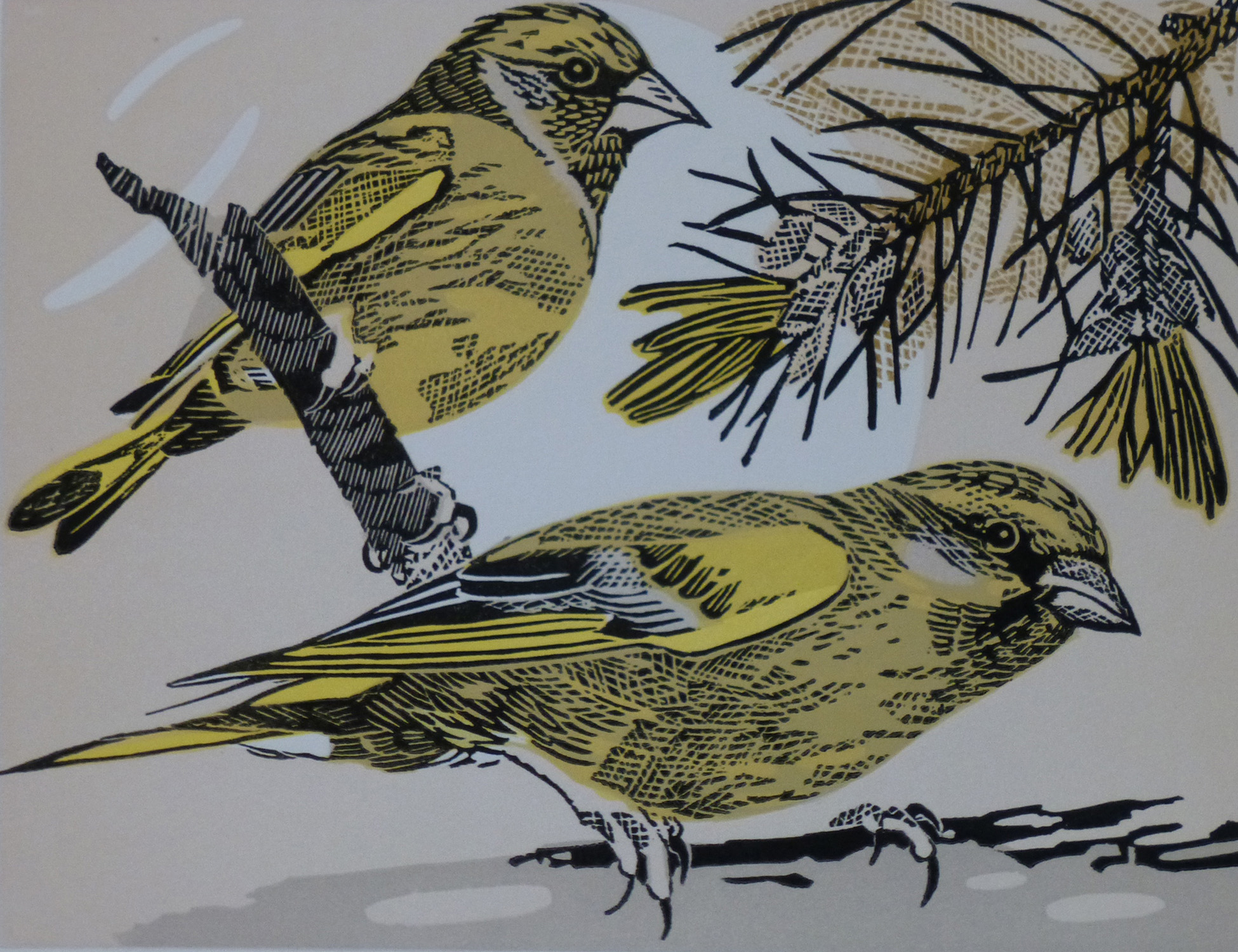 Greenfinches   linocut