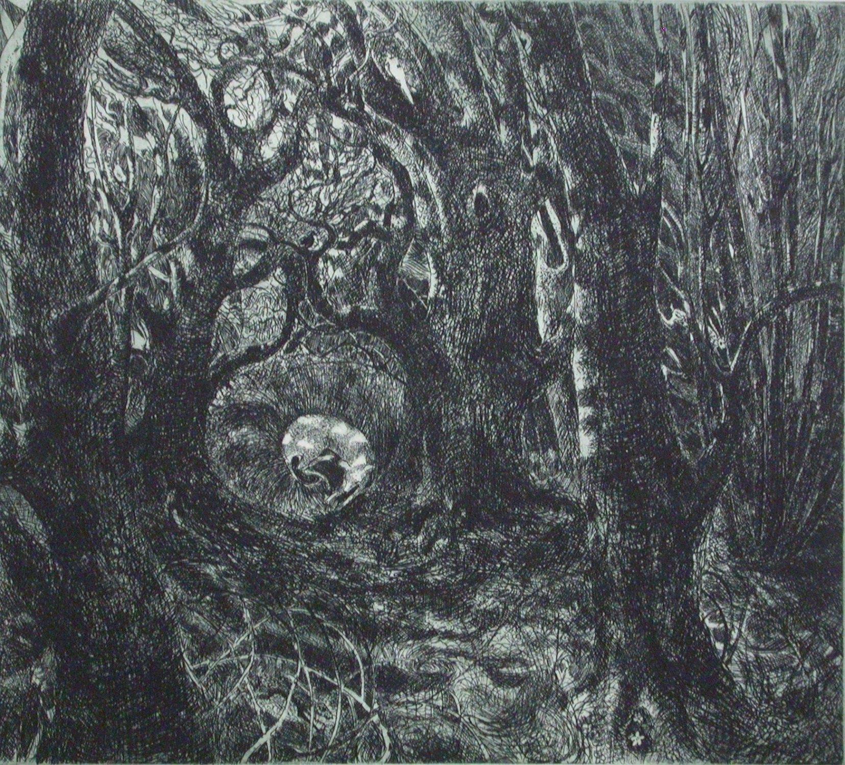 In the Wood   etching   27 x 24 cm  £220