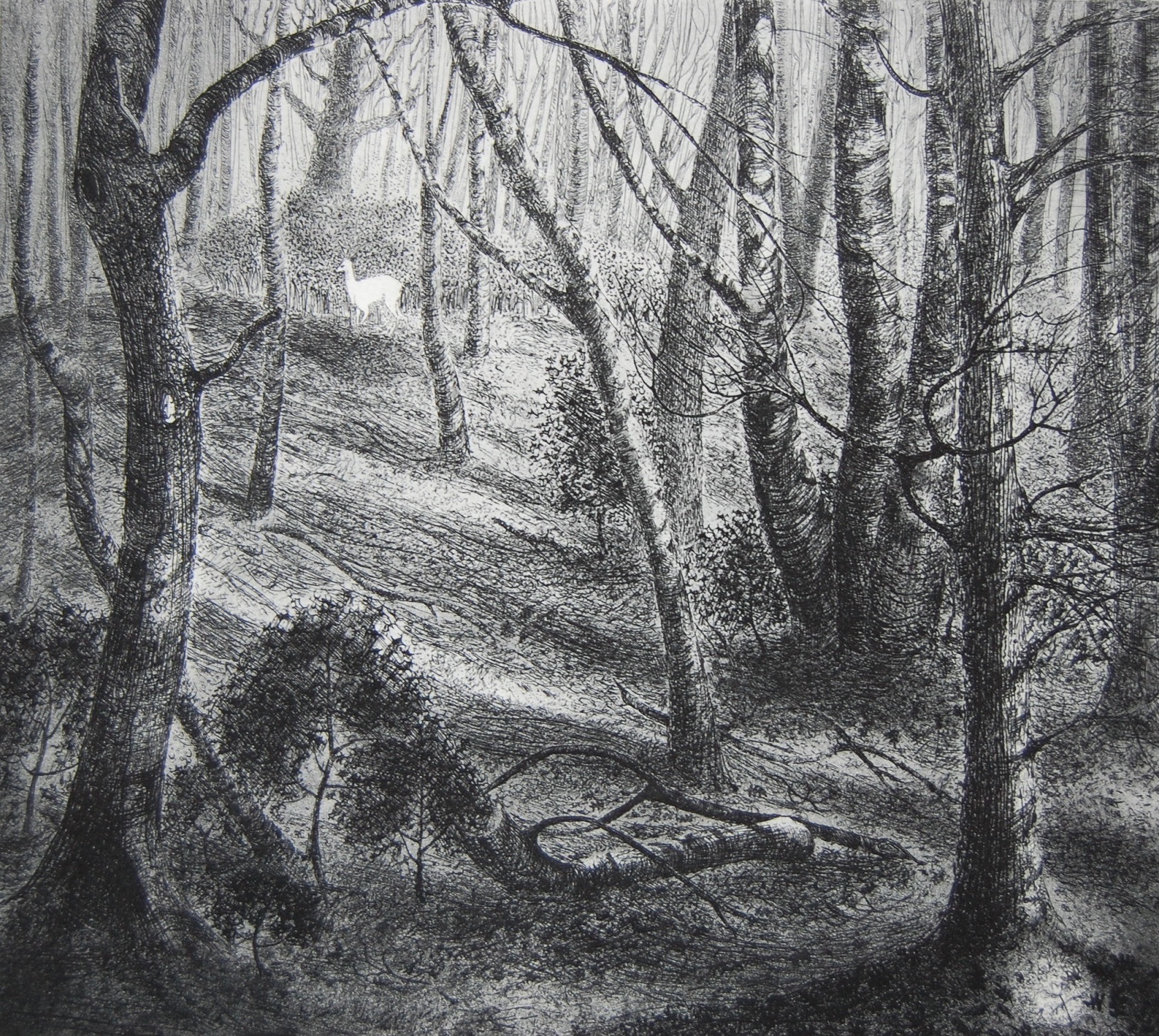 The White Hart   etching   27 x 24 cm  £220