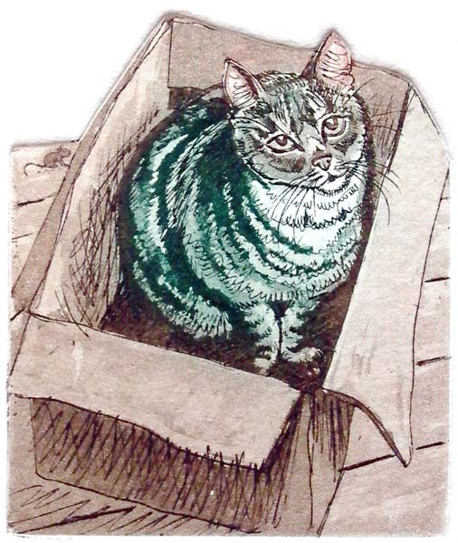 Cat in the Box   etching   20 x 18cm  £48 (unframed)
