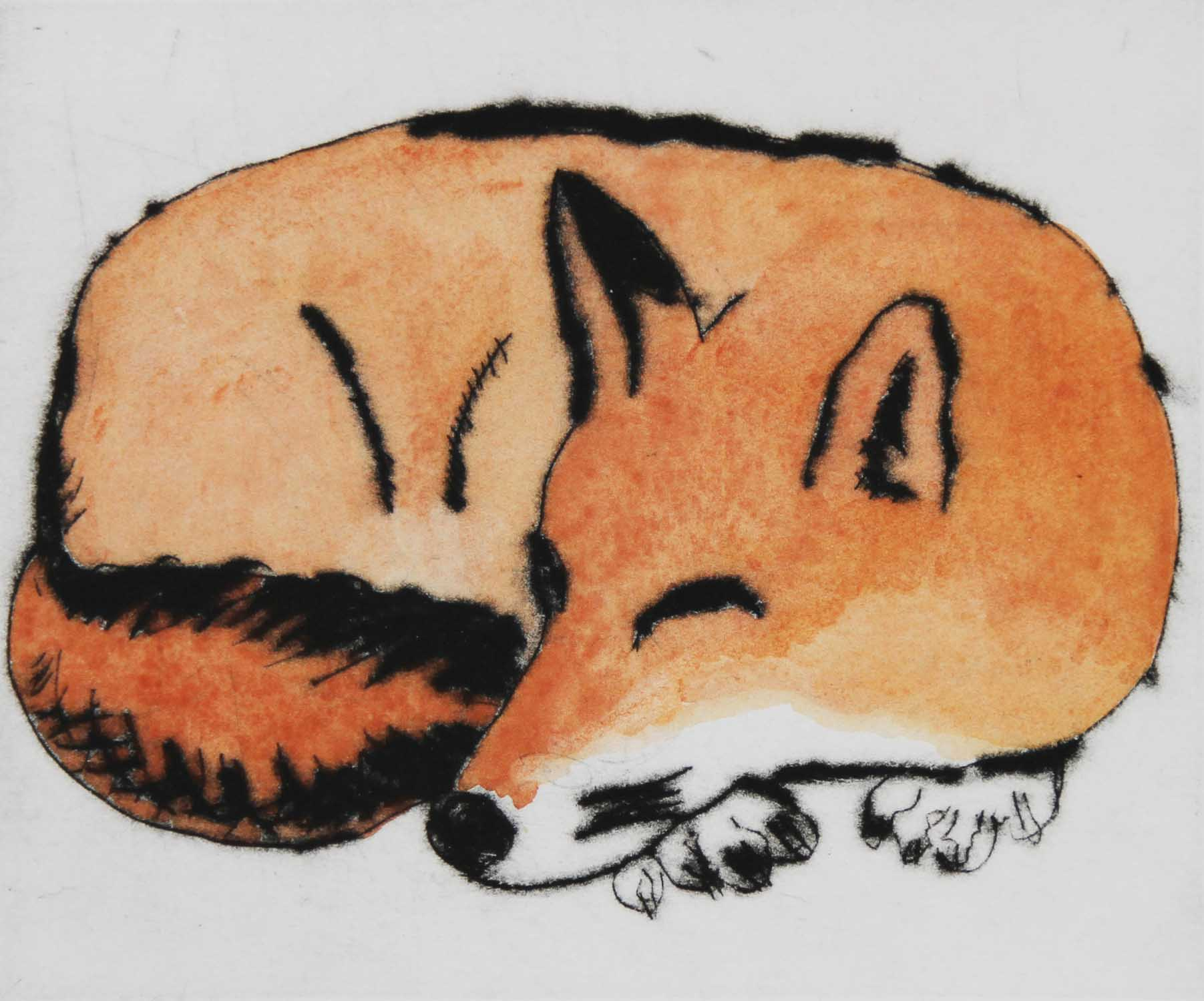 Fox   drypoint  and watercolour  12.5 x 15 cm  £270 framed £225 unframed