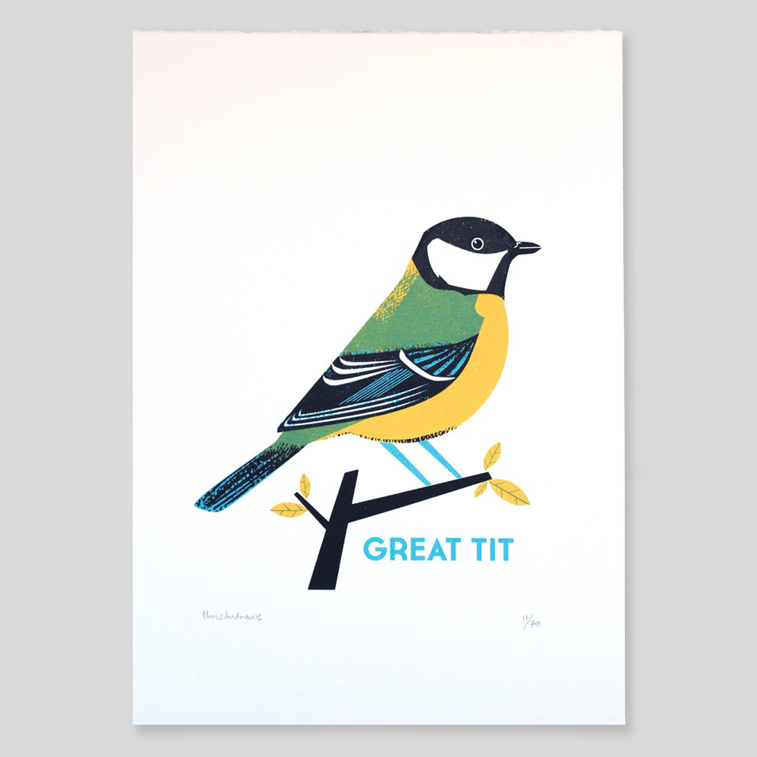 Great Tit   screenprint