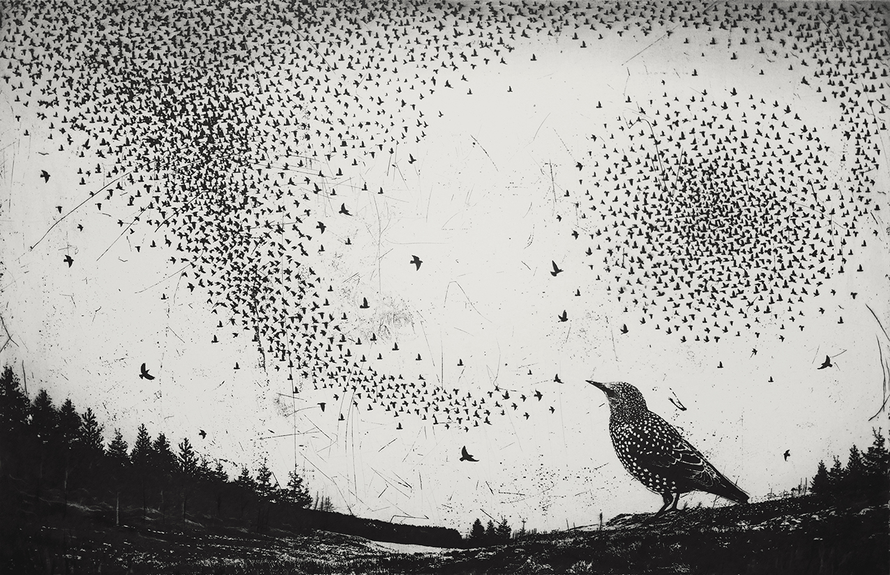 And Then Songs Filled the Air   etching   76 x51cm  £400 (unframed)