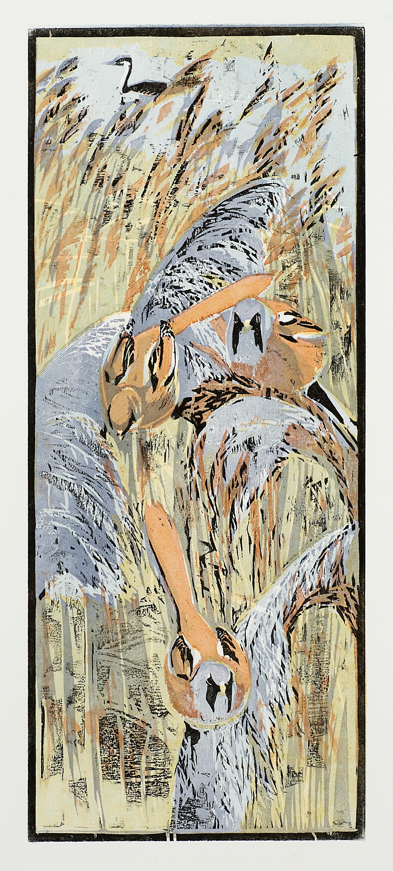 Bearded Tits   woodcut   16 x 39 cm  £95 (unframed)