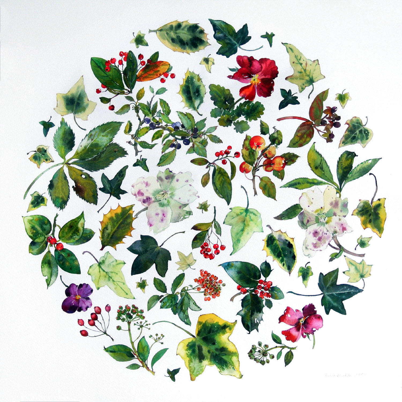 Winter Flower Circle  watercolour  48 x 48 cm  SOLD