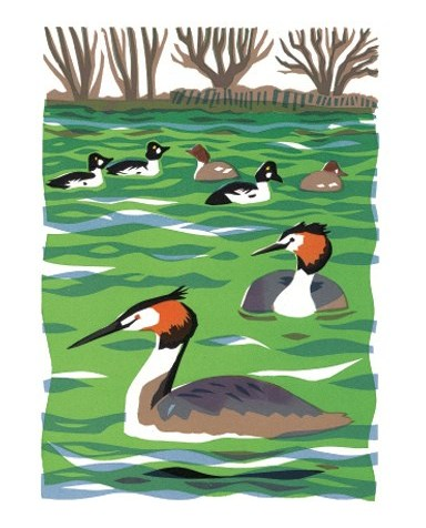 Carry Akroyd   Four Crested Grebes  serigraph