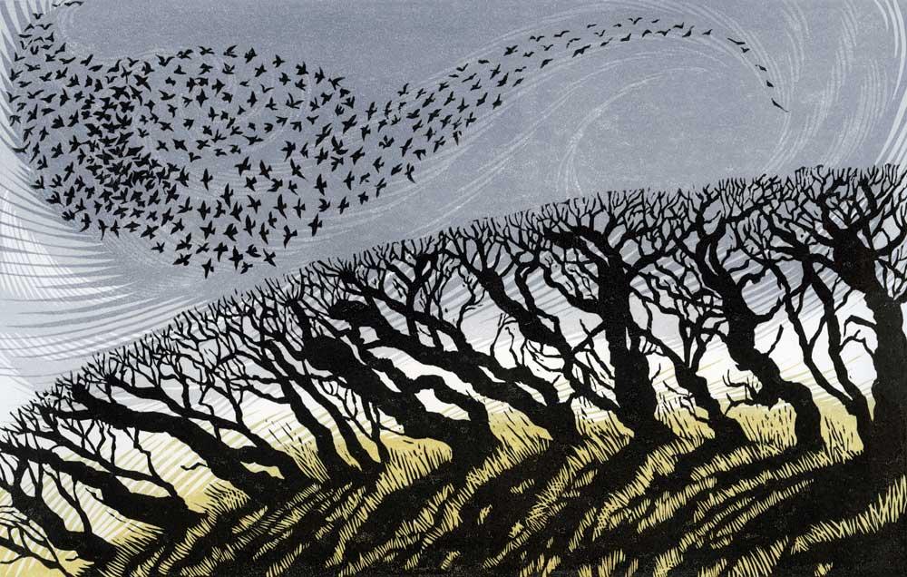 Niki Bowers   November Starlings  linocut