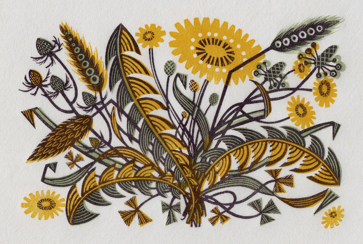 Angie Lewin   Dandelion Track I  wood engraving