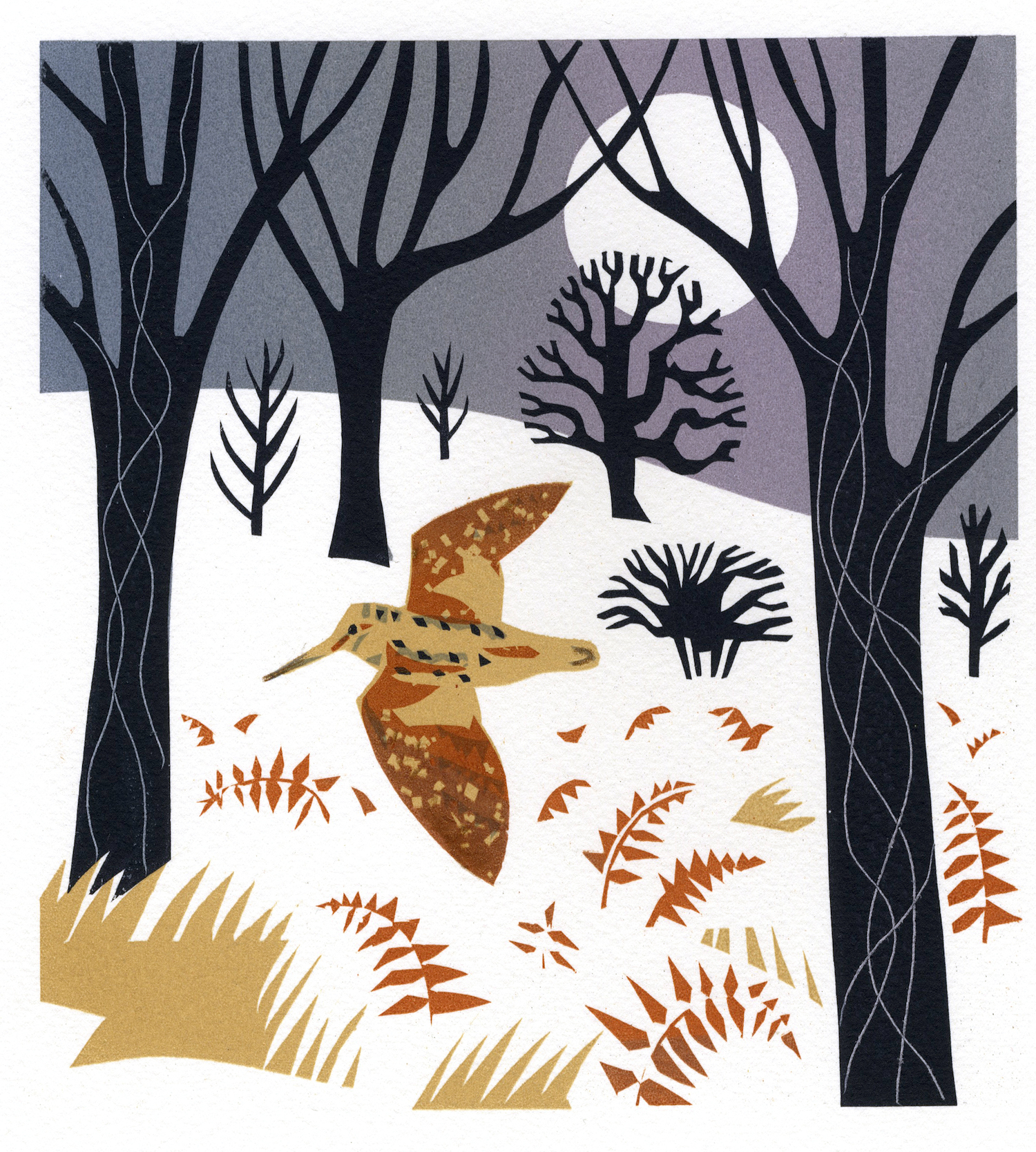 Woodcock   serigraph   edition of 10  30 x 30 cm  £280 framed, £210 unframed