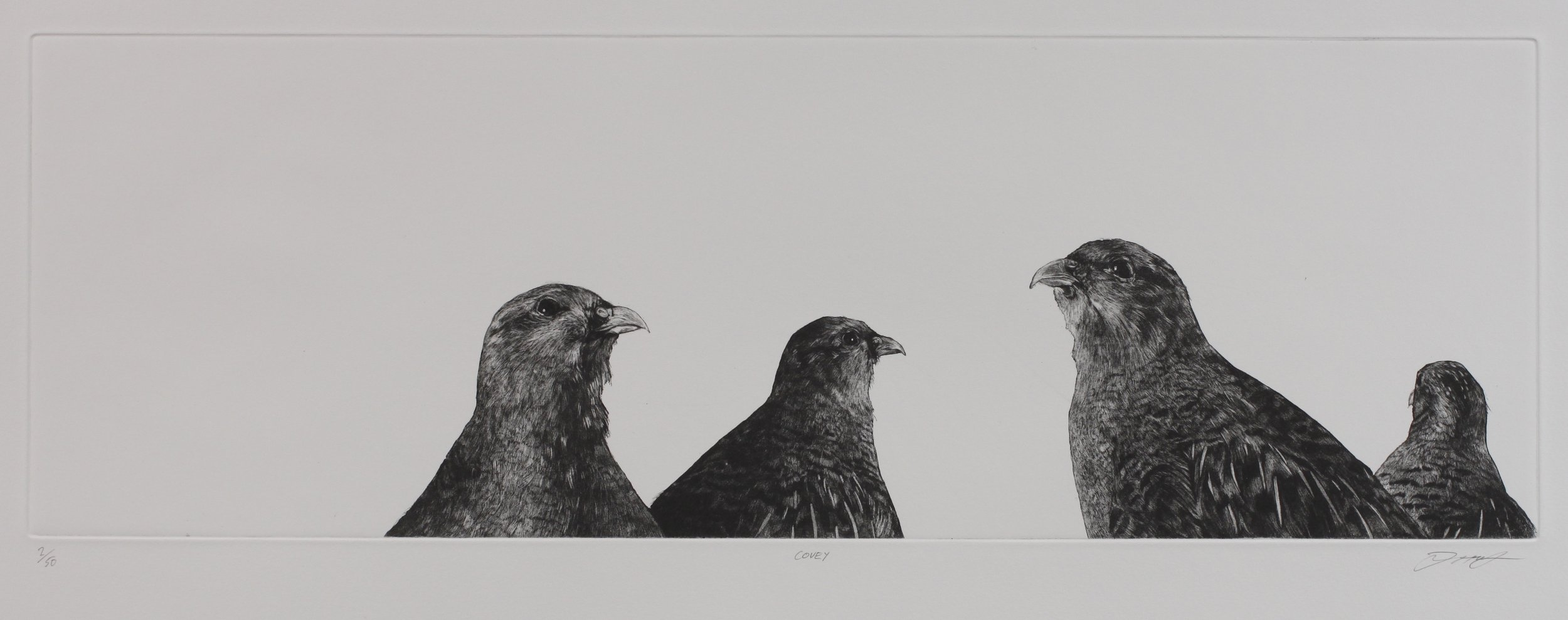 Covey  etching and aquatint  £320