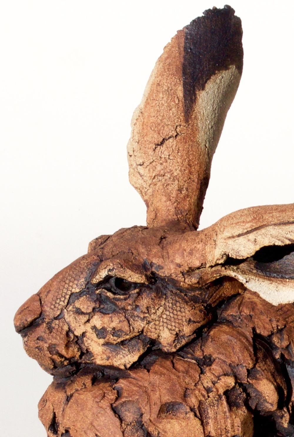 Simon Griffiths  Hare (close-up)  ceramic