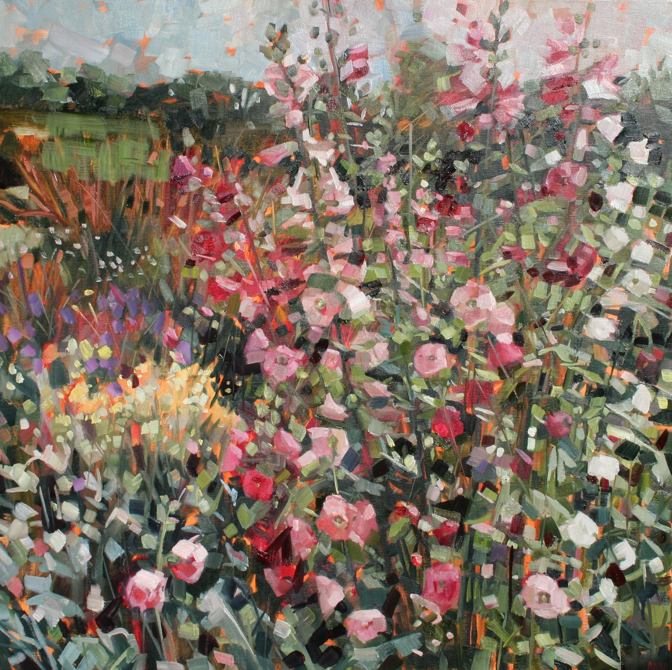 Hollyhocks  oil on linen  60 x 60 cm  SOLD