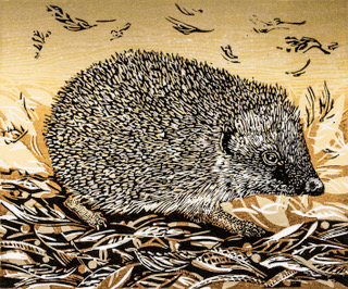 Autumn Hedgehog     linocut    200mm x 240mm      £120.00