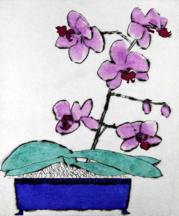 Japanese Orchid   drypoint  and watercolour  35.5 x 30 cm  £390 unframed