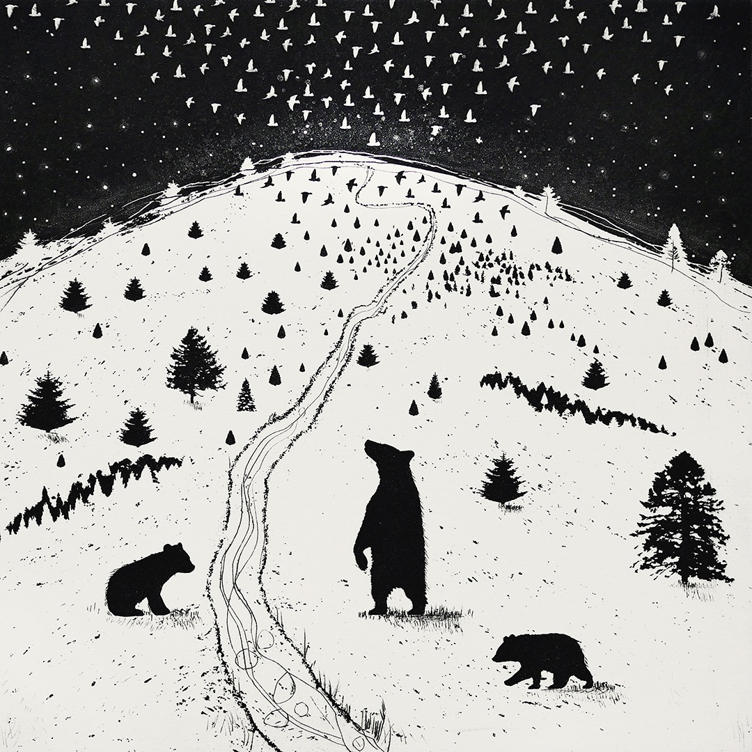 Bear with Me   etching   38 x 38cm  £220 (unframed)
