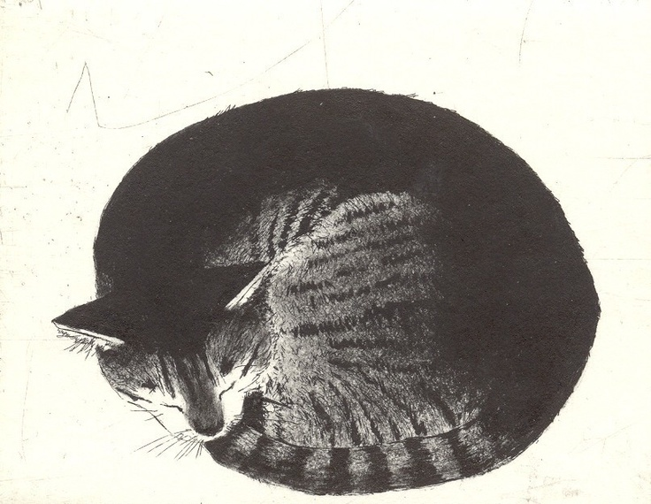 Kay McDonagh   Let Sleeping cats Lie