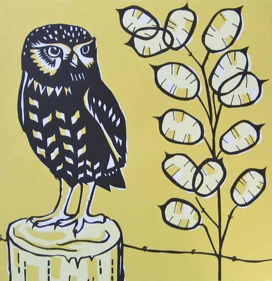 Catherine Bowdler   Little Owl