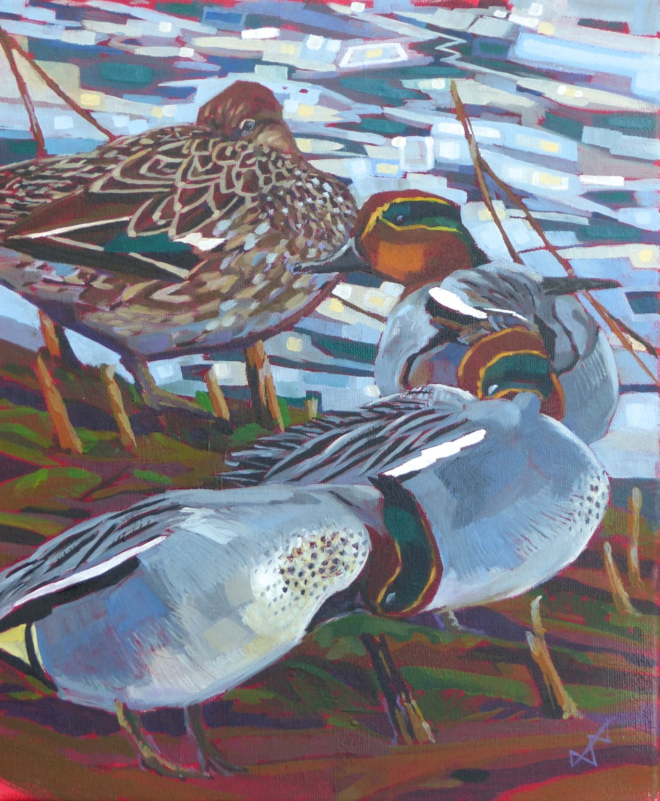 Four Teal at Lackford Lakes  Oil on Canvas  sold