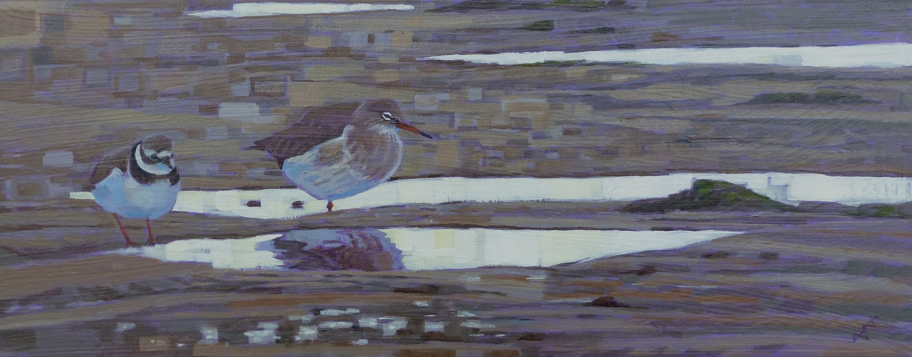 Winter Ringed Plover and Redshank  Oil on Canvas  sold