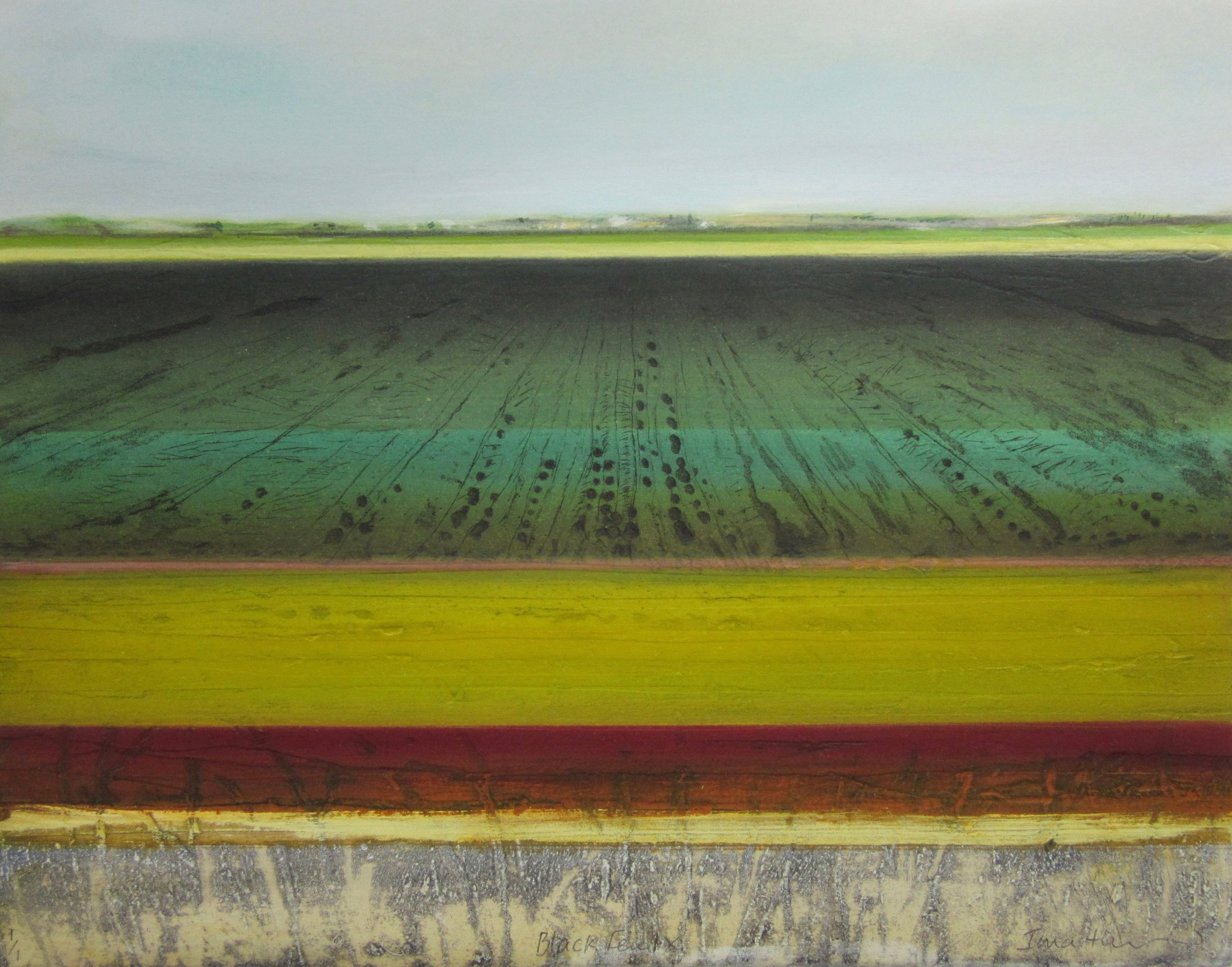 Black Fen IX   carborundum ,  monoprint  and  drypoint   sold