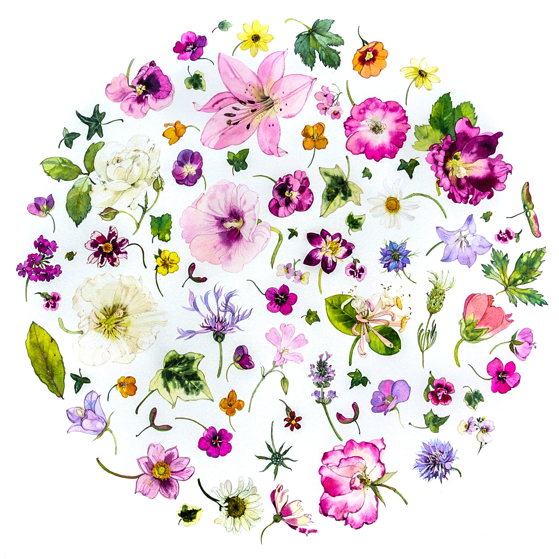 Summer Flower Circle  watercolour  69 x 69 cm (framed)  SOLD
