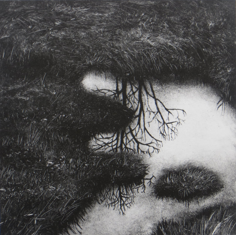 Reflections I  Intaglio Photopolymer  £95