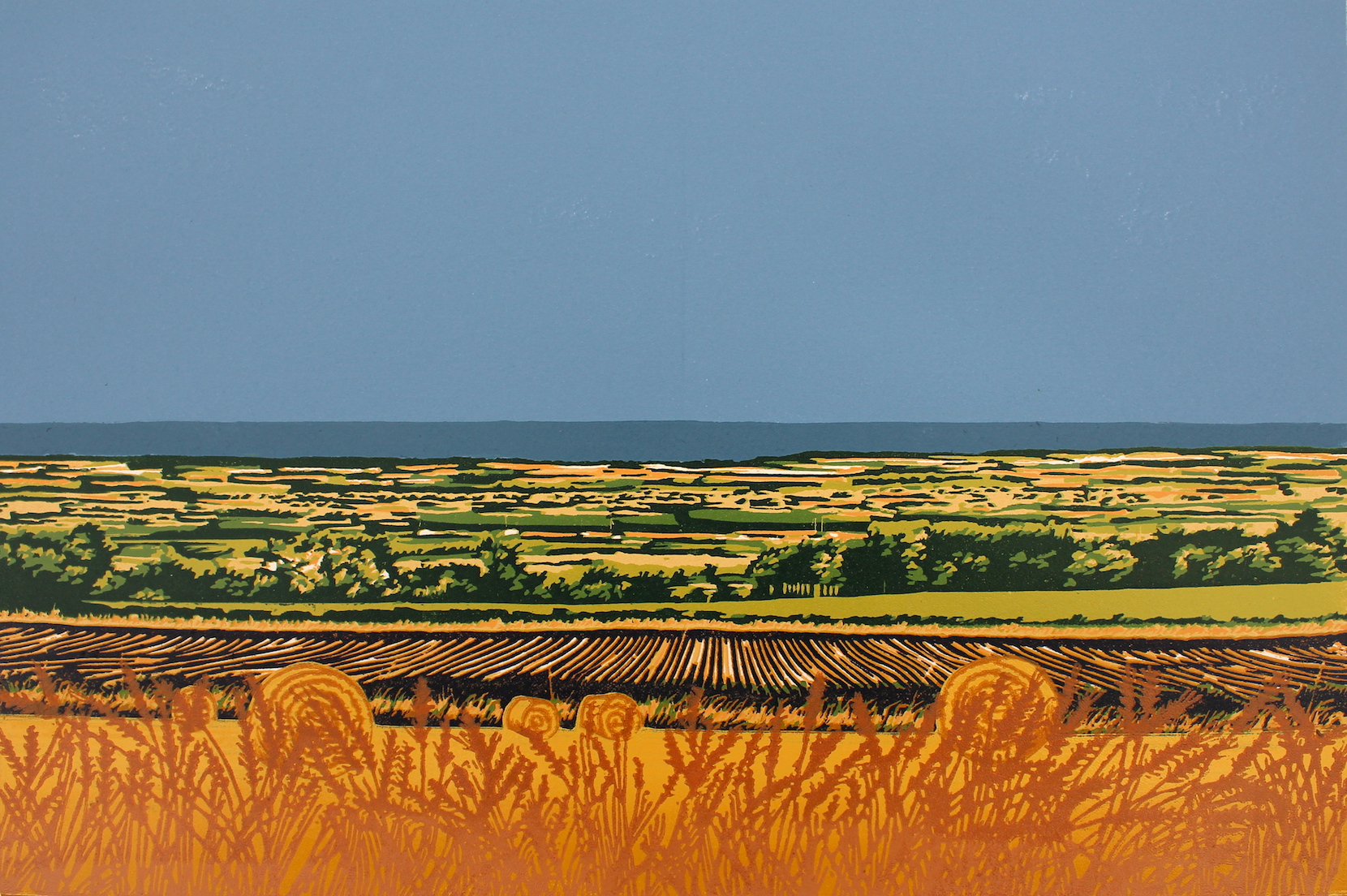 Summer Harvest  reduction  linocut   27 x 41cm image size  £240 unframed