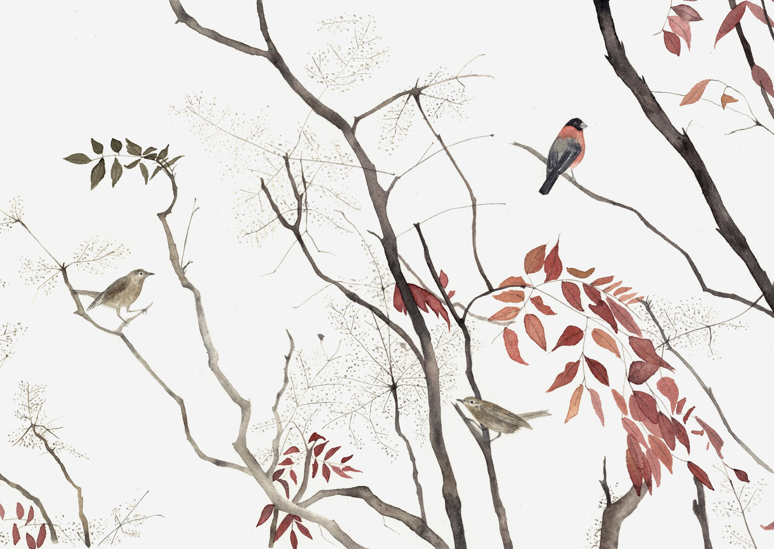 Branches and Red Leaves  watercolour  40 x 30 cm framed  £320
